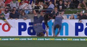 Cricket fan takes a spill!