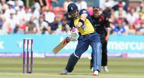 Bears edge out Foxes in T20