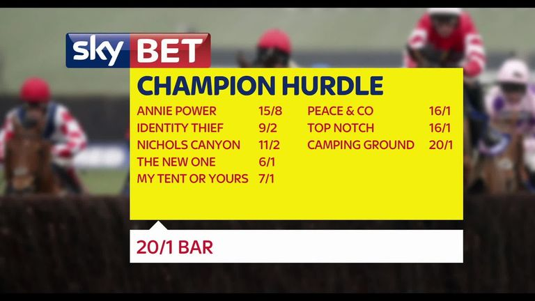 champion hurdle betting