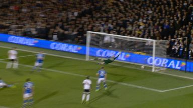 Did Fulham's strike cross the line?