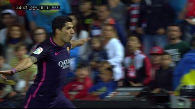 Sublime Suarez finish