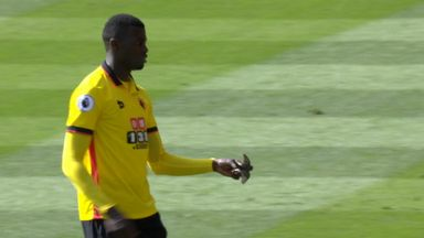 Niang rescues bird