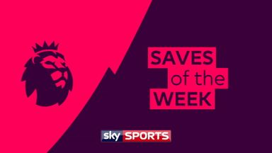 Premier League Saves of the Day