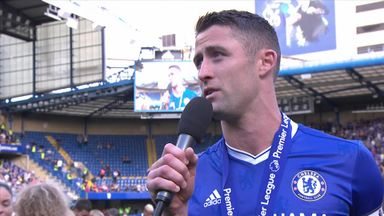 Cahill hails Terry