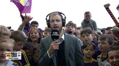 Wexford reach Leinster final