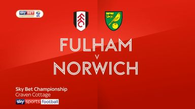 Fulham 1-1 Norwich