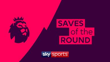 Premier League saves of the round