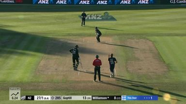 BLOG ONLY WILLIAMSON WICKET