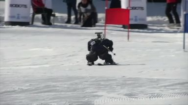 Robot Winter Olympics