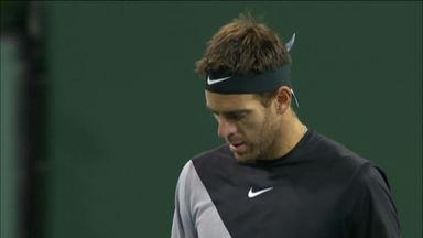 Del Potro v Mayer: Highlights