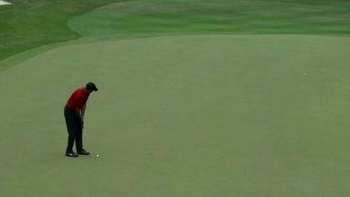 Woods drains monster birdie