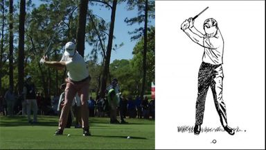 The Palmer swing in modern era