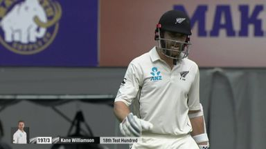 Williamson creates Kiwi history