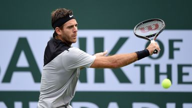 Del Potro v Ferrer: Highlights
