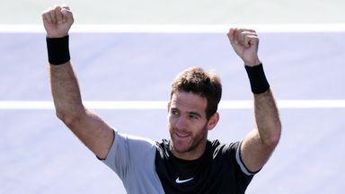 Del Potro ends Federer run