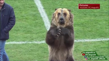 Russian performing bear condemned