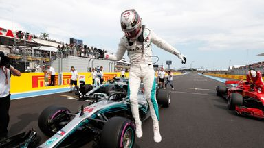Hamilton claims pole in France