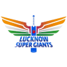 Delhi Daredevils badge